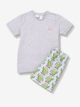 Boys Monster Pj Set